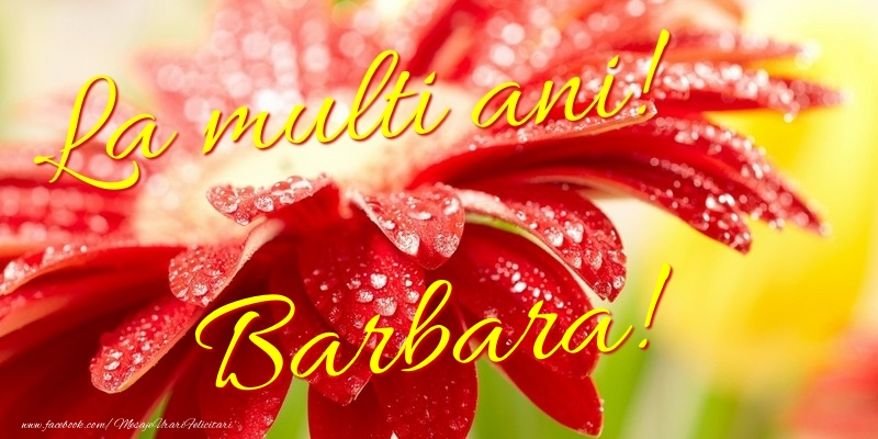Felicitari de la multi ani | La multi ani! Barbara