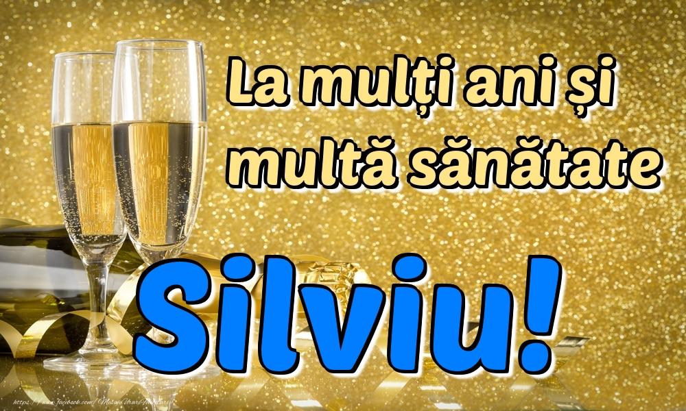 Felicitari de la multi ani | La mulți ani multă sănătate Silviu!