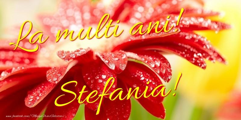 Felicitari de la multi ani | La multi ani! Stefania