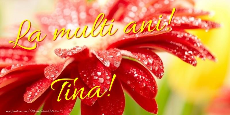 Felicitari de la multi ani | La multi ani! Tina