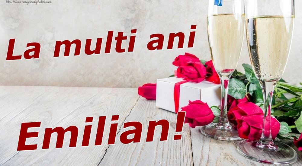Felicitari de zi de nastere | La multi ani Emilian!