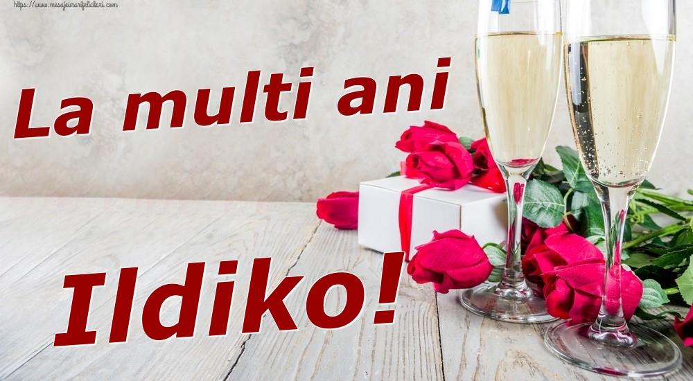 Felicitari de zi de nastere | La multi ani Ildiko!