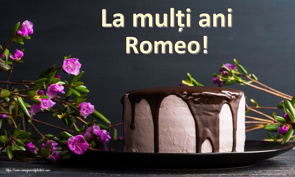 Felicitari de zi de nastere | La mulți ani Romeo!