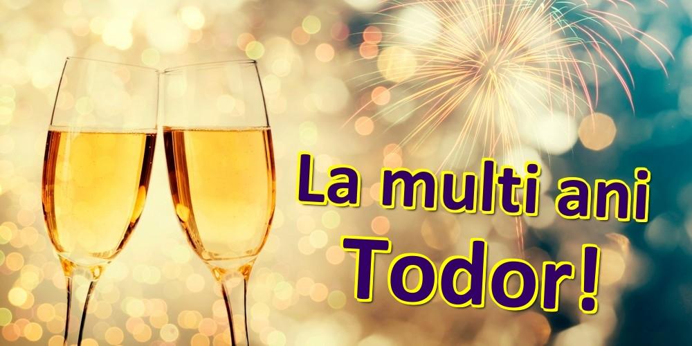 Felicitari de zi de nastere | La multi ani Todor!